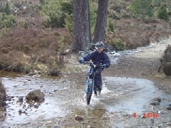 Cycling in Rothiemurchus pinewoods